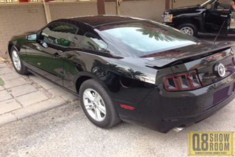 Ford Mustang 2013 Sports