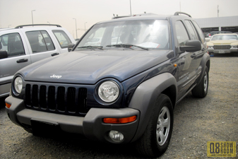 Jeep Cherokee 2003 Family