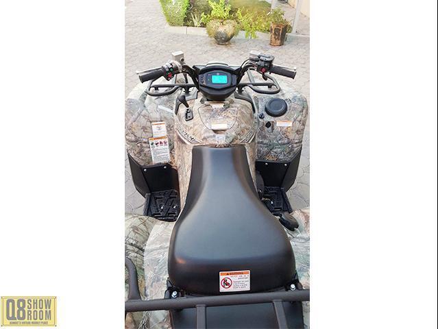 Yamaha Crizzly size 700